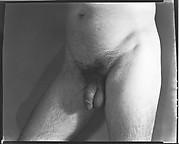 [Nude Study]