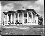 [Greenwood Plantation House with Horses Grazing, Louisiana]