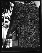 [South Seas: Thatched Roof House]