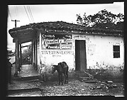 "[Donkey Tied to Post Outside ""La Nueva Diana"" General Store, Cuba]"