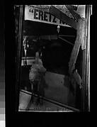 [Butcher Shop Window Display, Brooklyn, New York]