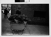 [Vendor with Flowers in Baby Carriage on Sidewalk]
