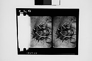 [South Seas: Two Motion Picture Film Frames of Man]