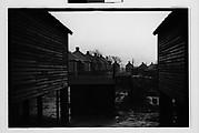 [Wooden Company Houses Through Yard, Southeastern U.S.]