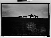 [Cattle and Herdsmen on Horseback, From Automobile, New Orleans Vicinity, Louisiana]