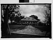 [Plantation House, From Automobile, New Orleans Vicinity, Louisiana]