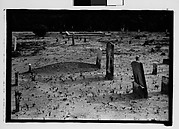 [Graves, Alabama]