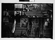 [Thirty-One 35mm Film Frames on Uncut Roll: 4 Views of Circus Storehouse Interior and 24 Studies of Elephants in Ringling Brothers Circus Winter Quarters, Sarasota, Florida, and 3 Test Frames]