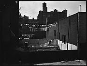 [Backyards of Apartment Buildings with Clotheslines, New York City]