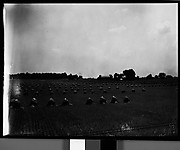 [Bales of Hay in Field, Near Chicago?]