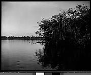 [Mangroves, Florida]