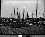 [Sponges on Wharf, Tarpon Springs, Florida]
