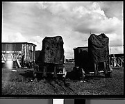 [Covered Train Cars, Circus Winter Quarters, Sarasota, Florida]