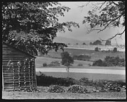 [Wooden Building and Fields on Estate of Suzette Morton Hamill, Lake Forest, Illinois]