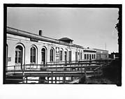 [Warehouse Waterfront Buildings and Footbridges, Through Trees, Savannah, Georgia]