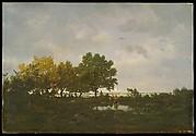 The Pond (La Mare)