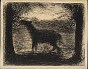 Foal (Le Poulain) [also called