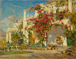 Bougainvillea on Capri