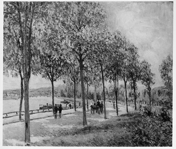 Allée of Chestnut Trees