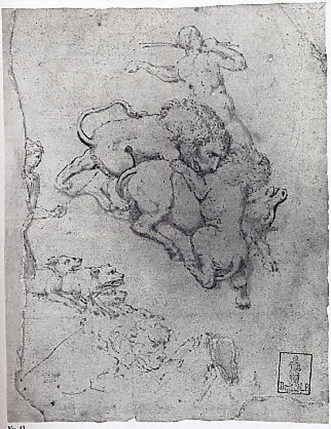 Hunting Scene and Lions Attacking Animals