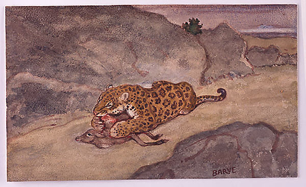 A Jaguar Devouring a Deer