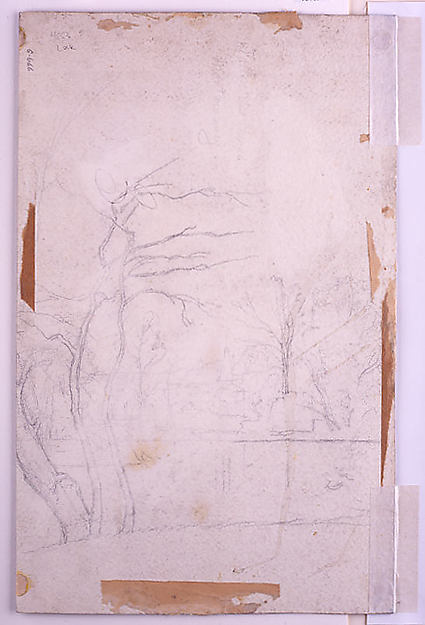 Landscape with a Distant Town (recto); Study of Trees around a Pond (verso)