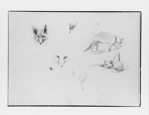 Foxes (from Switzerland 1870 Sketchbook), John Singer Sargent (American, Florence 1856–1925 London), Graphite on off-white wove paper, American