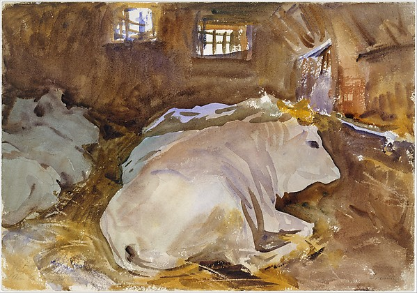 Oxen, John Singer Sargent (American, Florence 1856–1925 London), Watercolor, graphite, and wax crayon on white wove paper, American