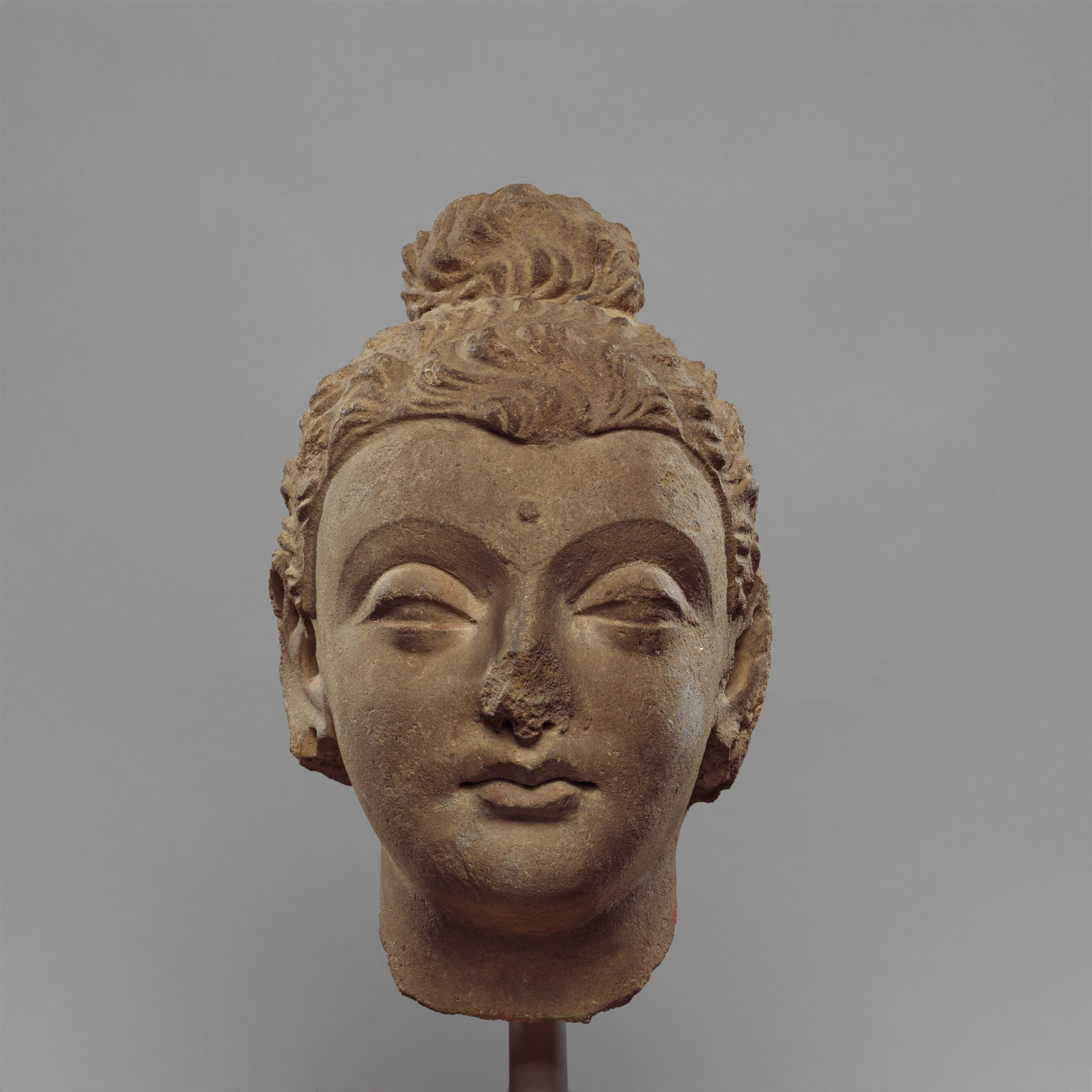 Head Of Buddha Pakistan Ancient Region Of Gandhara The Met