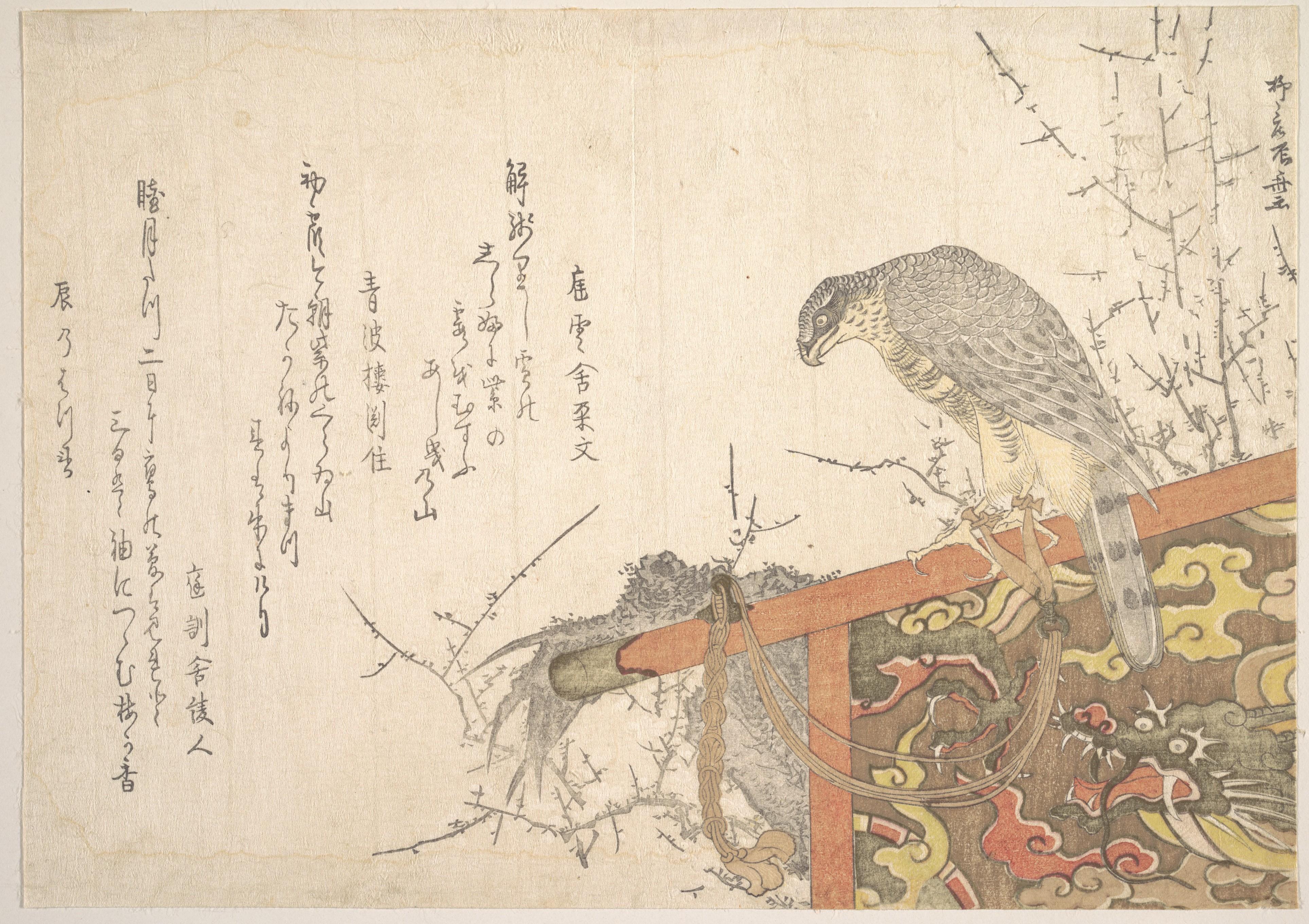 Ryūryūkyo Shinsai (active ca. 1799–1823), Hawk Tied to Perch [3853x2719]