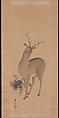 Deer, Suzuki Kiitsu (Japanese, 1796–1858), Hanging scroll; ink and color on silk, Japan
