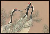 Flowers of a Hundred Worlds (Momoyogusa), Kamisaka Sekka (Japanese, 1866–1942), Set of three woodblock-printed books; ink and color on paper, Japan