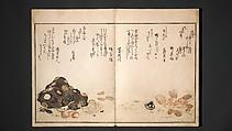 Gifts of the Ebb Tide (The Shell Book) (Shiohi no tsuto), Kitagawa Utamaro (Japanese, ca. 1754–1806), Woodblock printed book (orihon, accordion-style); ink, color, mica, and gold-leaf on paper, Japan