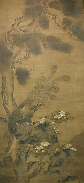 Peacock with Pine and Camellia, After Zhu Duan (Chinese, act. ca. 1500–21), Hanging scroll; ink and color on silk, China