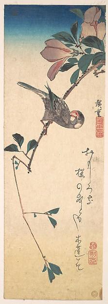 Purple Magnolia and Hornbill, Utagawa Hiroshige (Japanese, Tokyo (Edo) 1797–1858 Tokyo (Edo)), Polychrome woodblock print; ink and color on paper, Japan