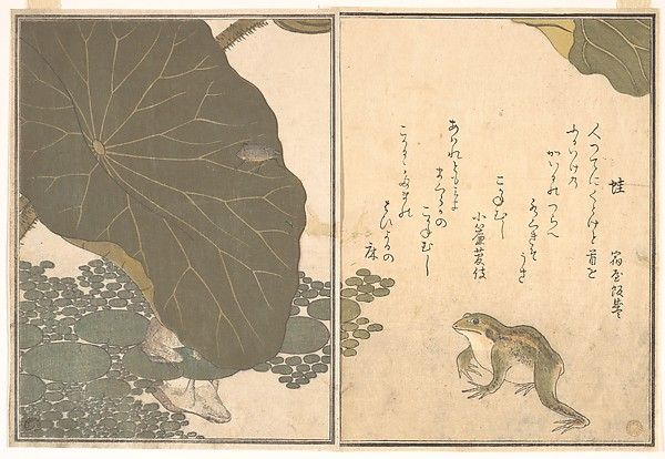 Frog (Kaeru); Gold Beetle (Kogane mushi), from the Picture Book of Crawling Creatures (Ehon mushi erami), Kitagawa Utamaro (Japanese, ca. 1754–1806), Page from woodblock-printed book; ink and color on paper, Japan