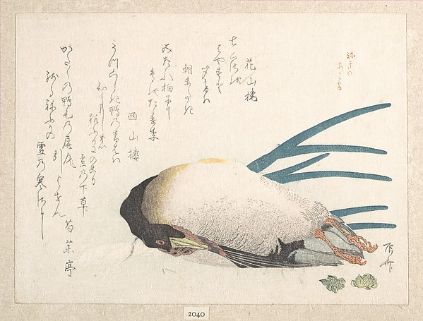 Spring Rain Collection (Harusame shū), vol. 1: Duck and Scallions, Ryūryūkyo Shinsai (Japanese, active ca. 1799–1823), Privately published woodblock prints (surimono) mounted in an album; ink and color on paper, Japan
