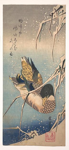 A Wild Duck near a Snow-laden Shore, Utagawa Hiroshige (Japanese, Tokyo (Edo) 1797–1858 Tokyo (Edo)), Polychrome woodblock print; ink and color on paper, Japan