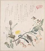 MET-DP138864「四方側霞連」「春の草木のうち」 ・・『』