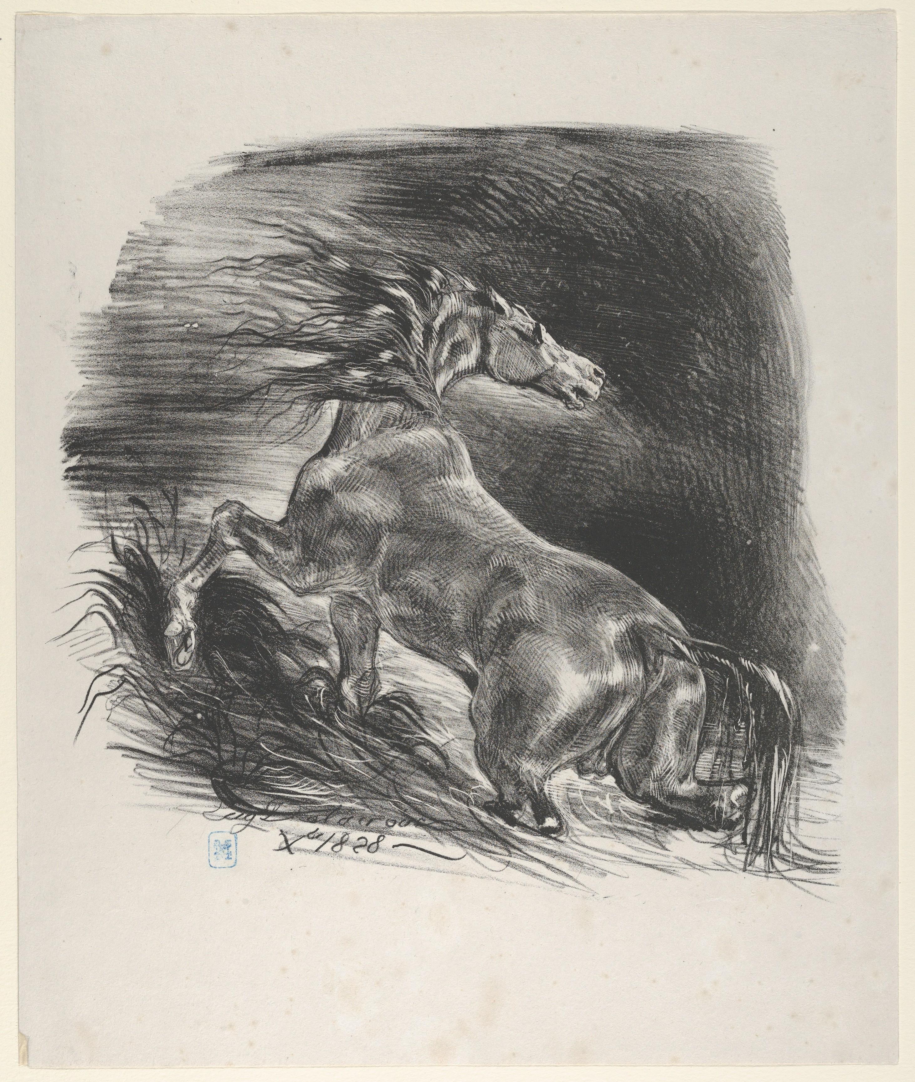 Eugene Delacroix Wild Horse The Metropolitan Museum Of Art