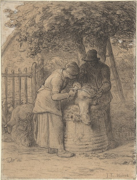Sheepshearing Beneath a Tree, Jean-François Millet (French, Gruchy 1814–1875 Barbizon), Conté crayon with stumping, heightened with pen and brown ink and white gouache on wove paper