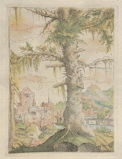 Facsimile Reproduction of The Small Spruce, Author of Meisterwerke der Graphik in XVIII jahrhundert, Alfred Stix, Colored facsimile of etching