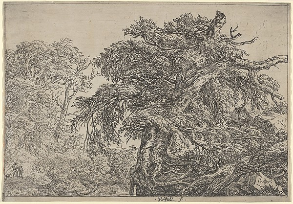 The Great Beech (Two Farmers with their Dog), Jacob van Ruisdael (Dutch, Haarlem 1628/29–1682 Amsterdam), Etching; first state of three