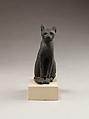 Cat, Cupreous metal