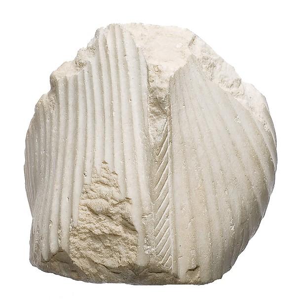 Hips of a royal female, Limestone