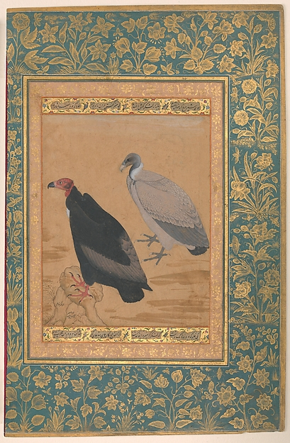 """Red-Headed Vulture and Long-Billed Vulture"", Folio from the Shah Jahan Album, Painting by Mansur (active ca. 1589–1626), Ink, opaque watercolor, and gold on paper"