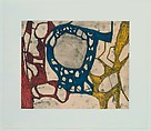 Models for Synthetic Pictures, Terry Winters (American, born Brooklyn, New York, 1949), Portfolio of twelve intaglio prints, each combining open bite etching, soft ground etching, sugar lift aquatint, and spit bite aquatint printed in five colors