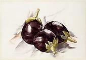 Eggplants, Charles Demuth (American, Lancaster, Pennsylvania 1883–1935 Lancaster, Pennsylvania), Watercolor and graphite on paper