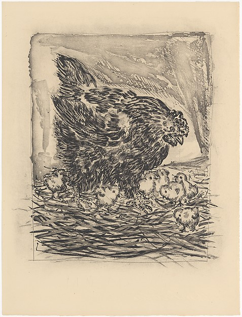 Mother Hen, from ¦Picasso: Original Etchings for the Texts of Buffon¦, Pablo Picasso (Spanish, Malaga 1881–1973 Mougins, France), Etching and aquatint