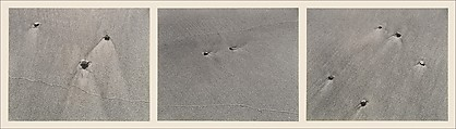 Untitled, Harry Callahan (American, Detroit, Michigan 1912–1999 Atlanta, Georgia), Gelatin silver prints